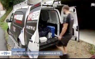 DKM Experts sur M6 pour la destruction des Nid de Guêpes en Région Rhône-Alpes