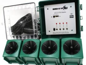 dispositif-sonore-anti-pigeons