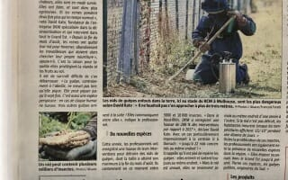 DKM Experts dans L'Alsace