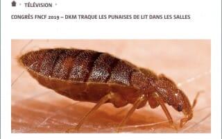 Fédération Nationale des Cinémas Français- DKM Experts traque les punaises de lit dans les salles de cinémas